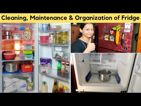 how-i-clean,-maintain-&-organized-my-fridge-|-fridge-organization-ideas-in-hindi-|-urban-rasoi