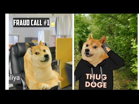 Fraud call || Chimtu ko aaya fraud call || funny dog video || part -1 ||