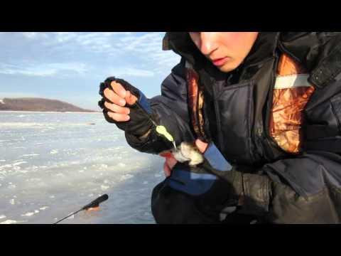 Прогноз клева рыбы Марий Эл, Йошкар-Ола Календарь и