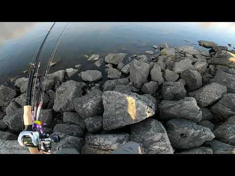 Busse Woods - Fishing - First GoPro Edit