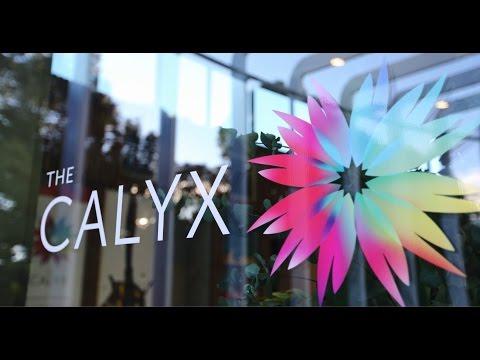 Project Snapshot: The Calyx - The Royal Botanic Garden, Sydney