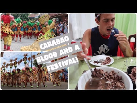 WHAT DID I JUST EAT AT A FESTIVAL IN THE PHILIPPINES? (Cantilan, Surigao Del Sur)