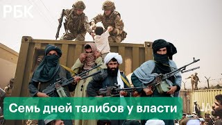Неделя талибов у власти. Хронология событий смены режима в Афганистане