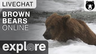 Mike Fitz Presentation - Brown Bears Live Chat 11/16/17 thumbnail