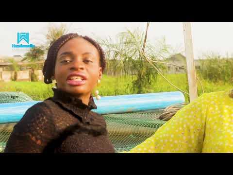 CATFISH BUSINESS IN NIGERIA - THE HUSTLE STORY  OF MR  CHIDI -HUSTLEWELLLA EP. 08