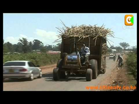 High Sugar Prices to Persist