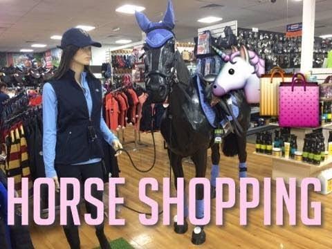 HORSE SHOPPING & POLEWORK VLOG | Daisyequine