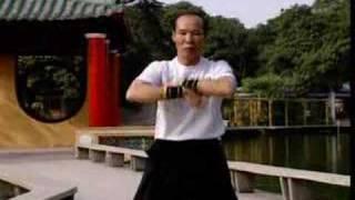 Pan Nam Wing Chun Bil Jee