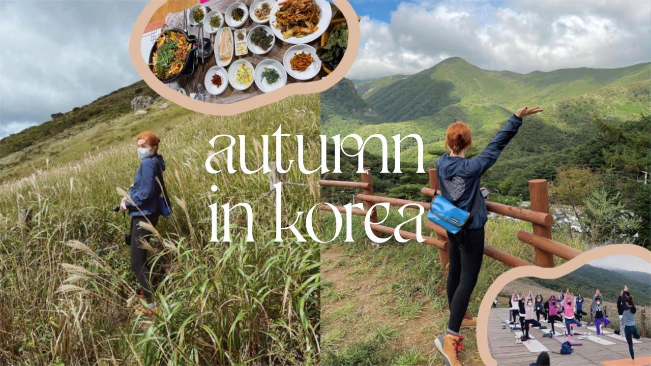 autumn in korea 🌾 hiking in ulsan, making makgeolli, mountain top yoga, my life in korea VLOG