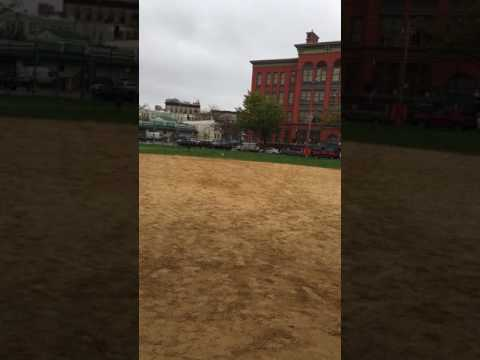 Rocco the Doberman plays baseball