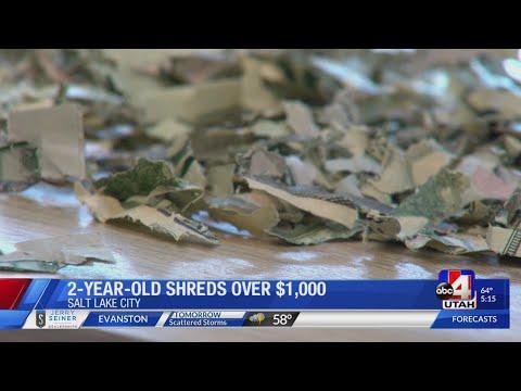 Kalisha Perera - 2-Year Old Shreads $1K In Cash!