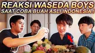 WASEDA BOYS NYOBAIN 11 BUAH INDONESIA YANG GAK ADA DI JEPANG!