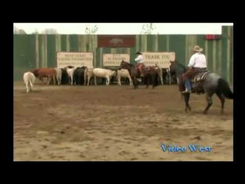 NCHA VST Training Series - Basic video techniques