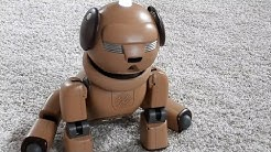ROBO TOYS | SONY AIBO ERS-311C ROBOTER-HUND - MOPS