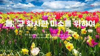 ➠ 봄, 그 화사한 미소를 위하여 - 피아노 포엠