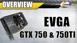 видео EVGA GeForce GTX 750