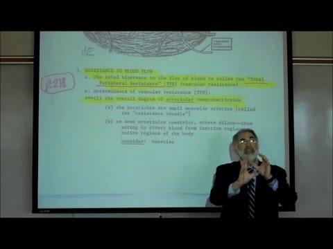 CARDIOVASCULAR PHYSIOLOGY; PART 1 by Professor Fink.wmv