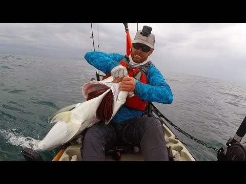 How to Catch Big Fish Offshore from Kayaks | Field Trips Panama