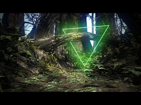 1 Hour Pure Rainforest Sounds for Root Chakra Healing Meditation