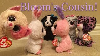 Beanie Boo's: Bloom's Cousin!