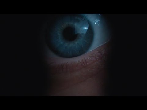 Berlin Syndrome    2017 Teresa Palmer Max Riemelt