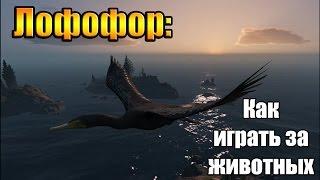 GTA 5 - Как играть за животных (Лофофор#11)