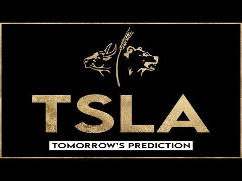 TSLA Stock - Tesla Prediction for Tomorrow, Feb. 26th
