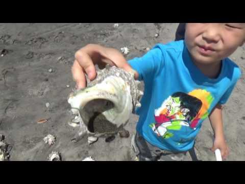 Metal detecting Japan. Treasure on the beach