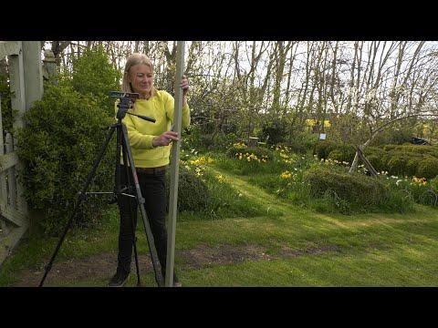 FREE Garden Survey – What Every Gardener NEEDS
