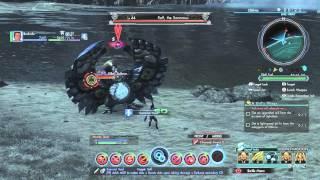 Xenoblade Chronicles X - Bushido, Duelist lvl 52, Super Combo!