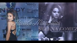 """The Needy Heart Wants What It Wants"" Mashup (Ariana Grande / Selena Gomez)"