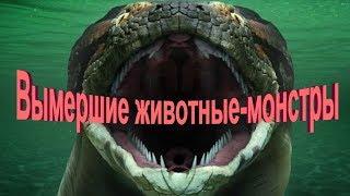 Вымершие животные монстры.  ТОП-5 ужасных монстров.