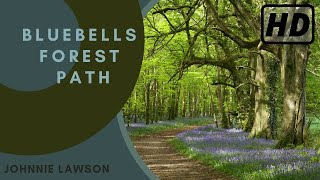 1 hour Nature Sounds Relaxation Meditation Birdsong Birds singing Johnnie Lawson