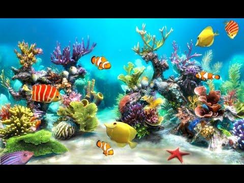Fish tycoon 2 youtube for Sfondo animato pesci