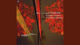 Symphony No. 1 in D Major, Hob.I:1: II. Andante
