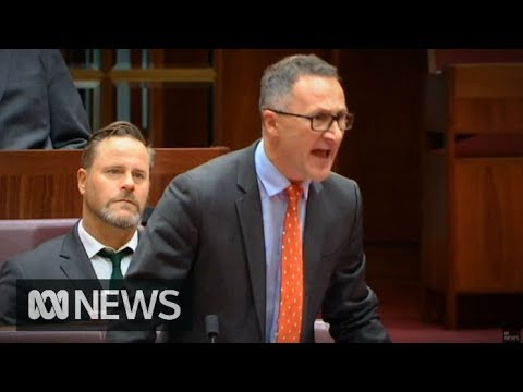 Richard Di Natale flares up in the Senate