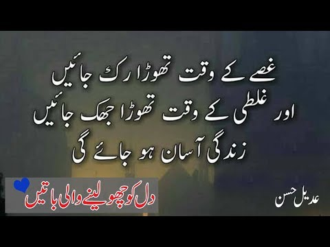 Most Heart Touching Collection of  Precious Words|Urdu Life changing Quotes|Adeel Hassan|Quotes|