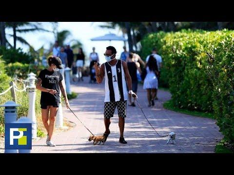 ¿Un Perro O Un Gato Se Puede Contagiar De Coronavirus?