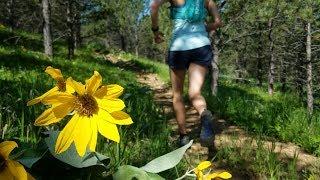 The Trail Run - Wyoming, USA