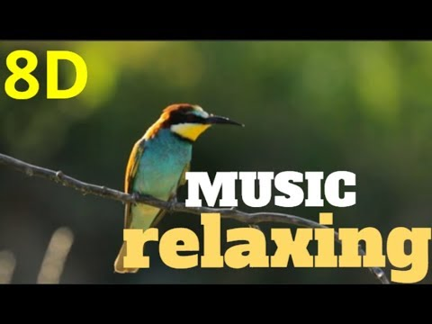 🎧8D-Music RELAXING  nature sound birds-meditation,calm,peace audio 8D