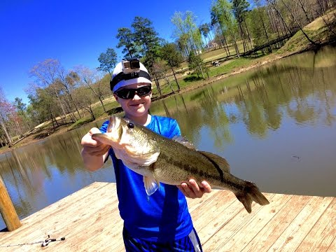 Prespawn Bass Fishing With Minnows (5 Lber)