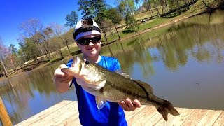 prespawn bass fishing with minnows 5 lber