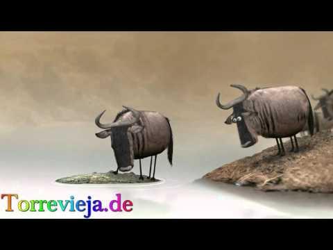 Lustiges Video - Torrevieja.de - ein Spaß Video