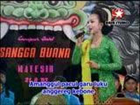 Jineman Uler Kambang, Langgam Meh Rahino