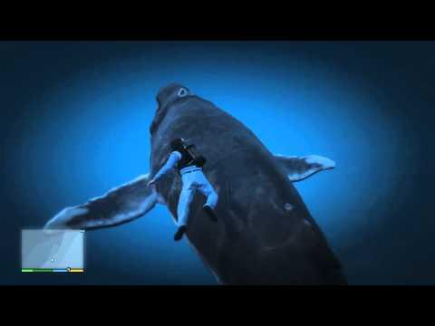 GTA V - A Big Whale