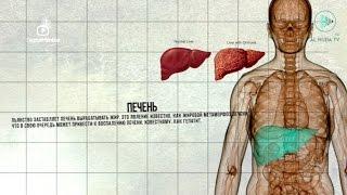 видео STATISTICA в медицине