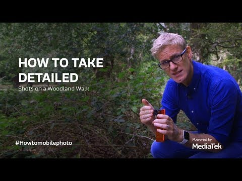 how-to-take-detailed-shots-on-a-woodland-walk