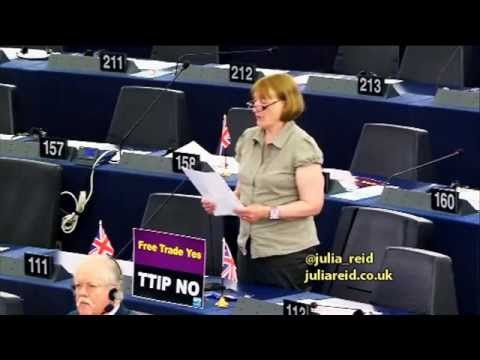 EU energy market mechanisms are impoverishing European industries - UKIP MEP Julia Reid