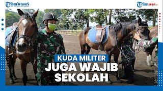 Pusdik Kavaleri, Sekolahnya Kuda Perang Dan Prajurit Baret Hitam