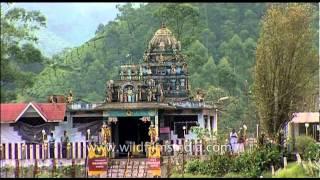 Murugan temple with Munnar tea gardens behind